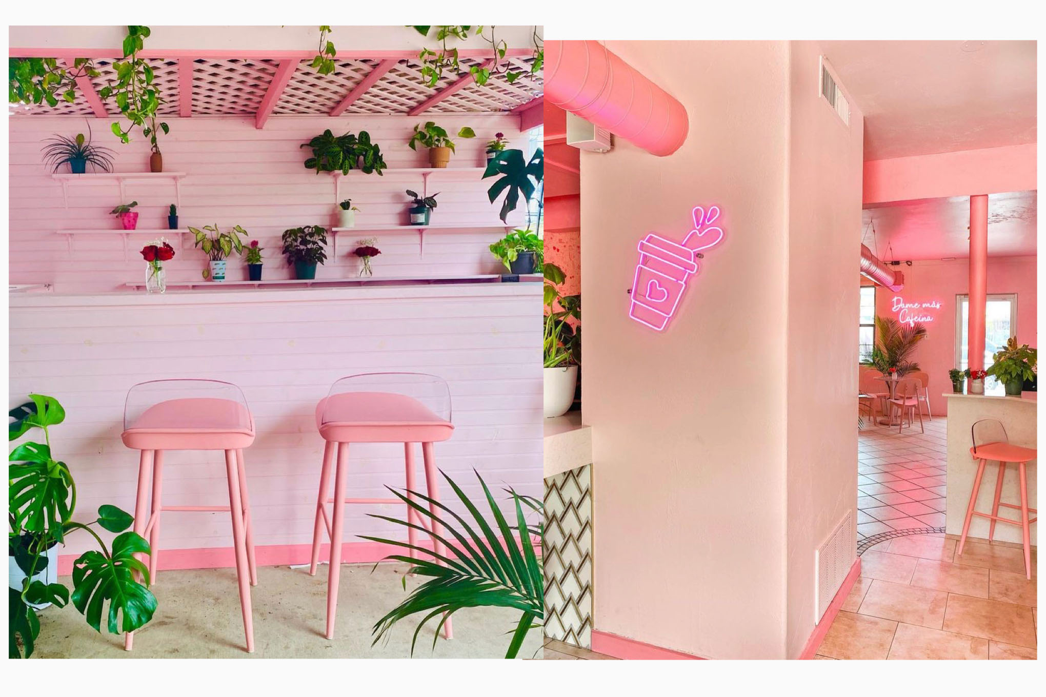 Revival Coffee's pink interior makes it one of the best spots to create a TikTok in Austin.